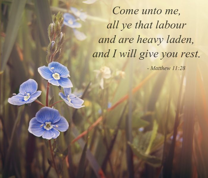 I Love the Bible - Come unto me, all ye that labour and are heavy ...
